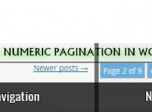 Manually Add Numeric Pagination In WordPress Themes-Pak Coders