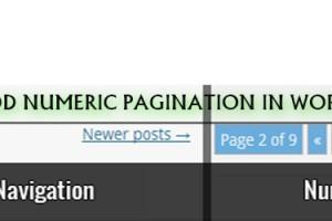 Manually Add Numeric Pagination In WordPress Themes-Pak Coders